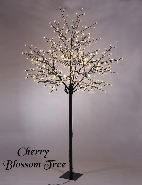 Cherry Blossom Trees for Rent